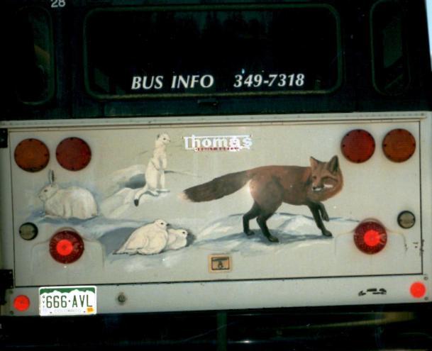 Wildlife-1